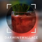 #FridayNight viibes? Get on to this task!#DarwinandWallace needs someone to test #cocktails at their six amazing #SouthLondon bars...& are paying £600! https://t.co/ucPEJny6Tx #friyay #london #newtask #drinks