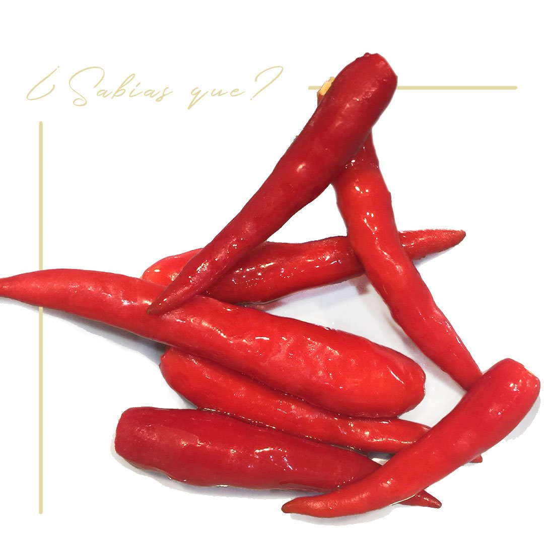 Chile capsaicina