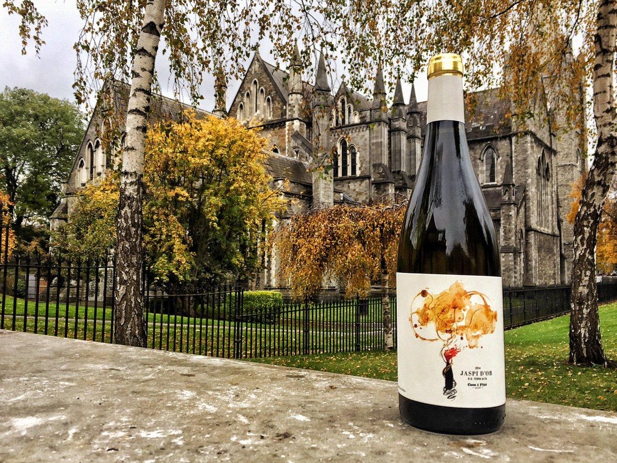 Wein aus dem Dublin Profil der Dating-Seiten