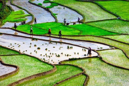 Is Sapa worth visiting in 2018? Vietnam will be the next destination coming soon to Anywhere.com! ow.ly/oI6q30jLy0s