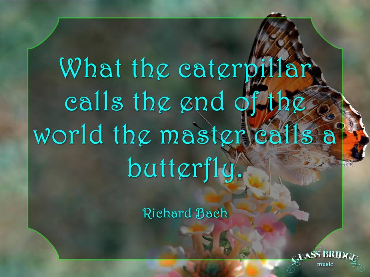 ❓ Ending or Beginning  ❓ #RichardBach #Butterflies https://t.co/WvdlcHVToO