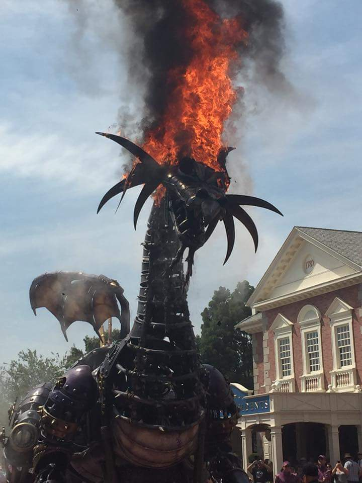 [Magic Kingdom] Disney Festival of Fantasy Parade (09 mars 2014) - Page 8 Dc8MZTLVMAARA7x