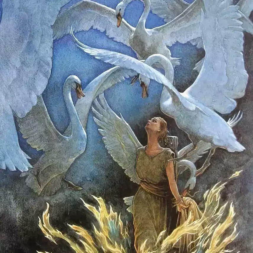 иллюстрации к сказке шесть лебедей борисова этот раз