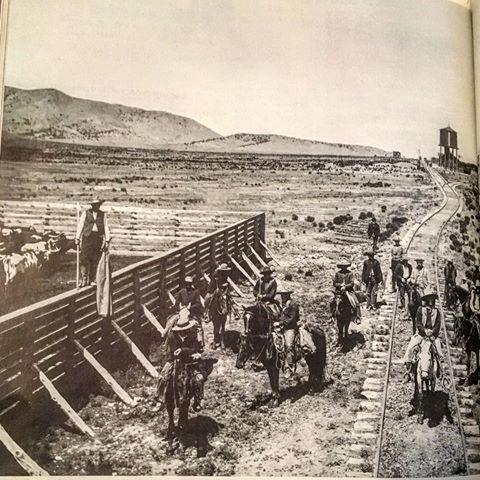 the long walk tears of the navajo