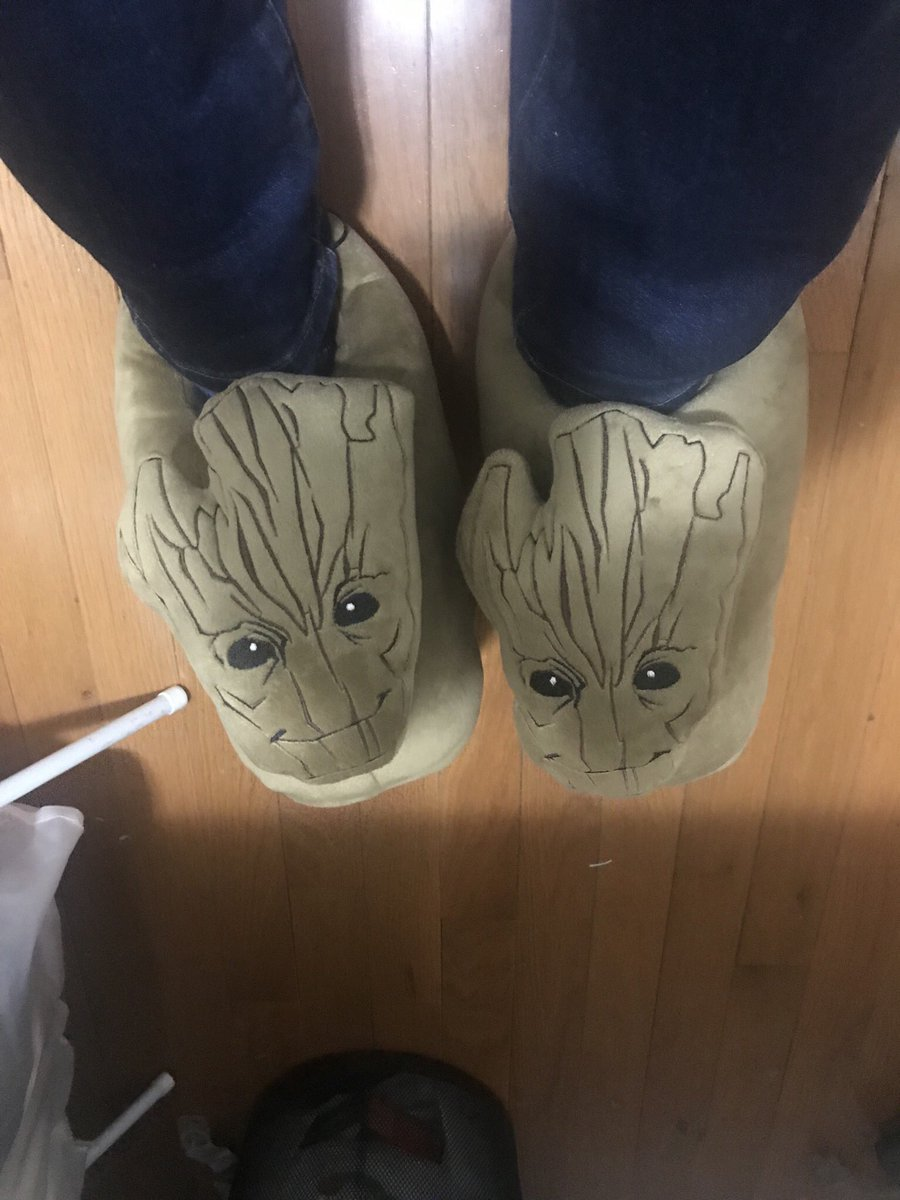well my Groot slippers arrived too late