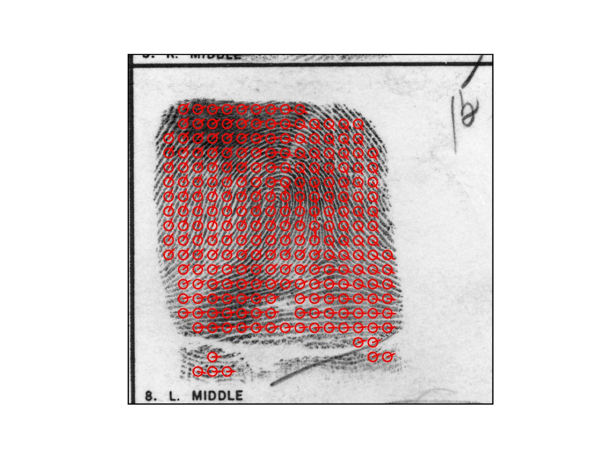Arxiv On Twitter Latent Fingerprint Recognition Role Of Texture