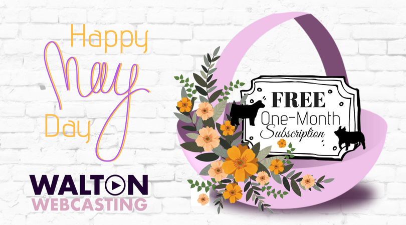 Walton webcasting on twitter spring has sprung enjoy a 1 month walton webcasting on twitter spring has sprung enjoy a 1 month free subscription to our archived shows and stockcenter junglespirit Gallery