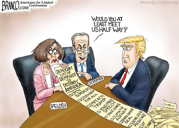 Image result for branco cartoons democrat coup