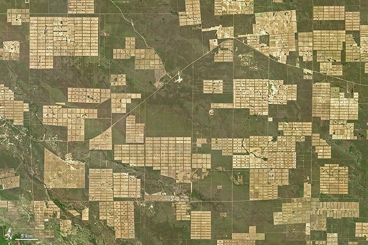Deforestation in Paraguay  https://t.co/Ax9vvwNKK7 #NASA