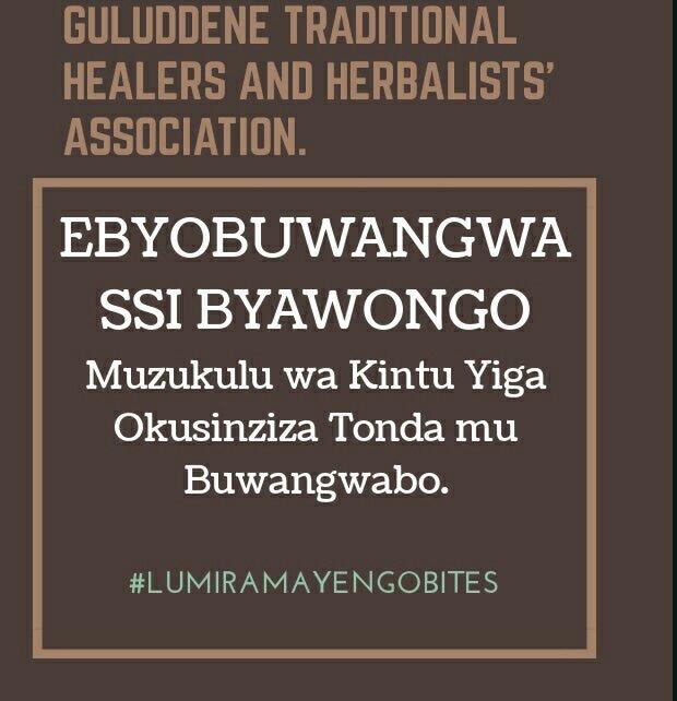 Guluddene traditional healers on Twitter