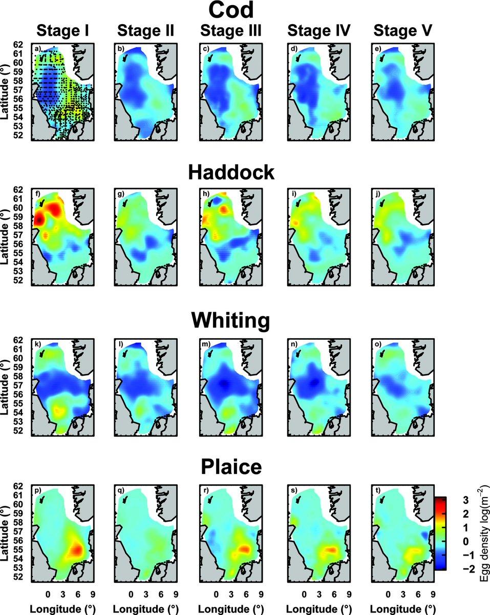 pdf ethnische ungleichheiten im bildungsverlauf mechanismen befunde debatten