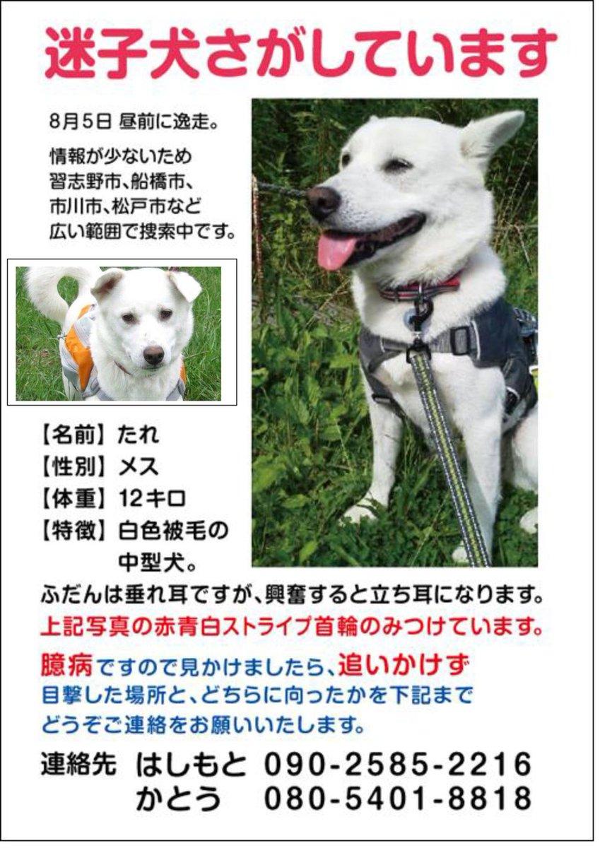 unapo #END殺処分JAPAN's photo on 習志野