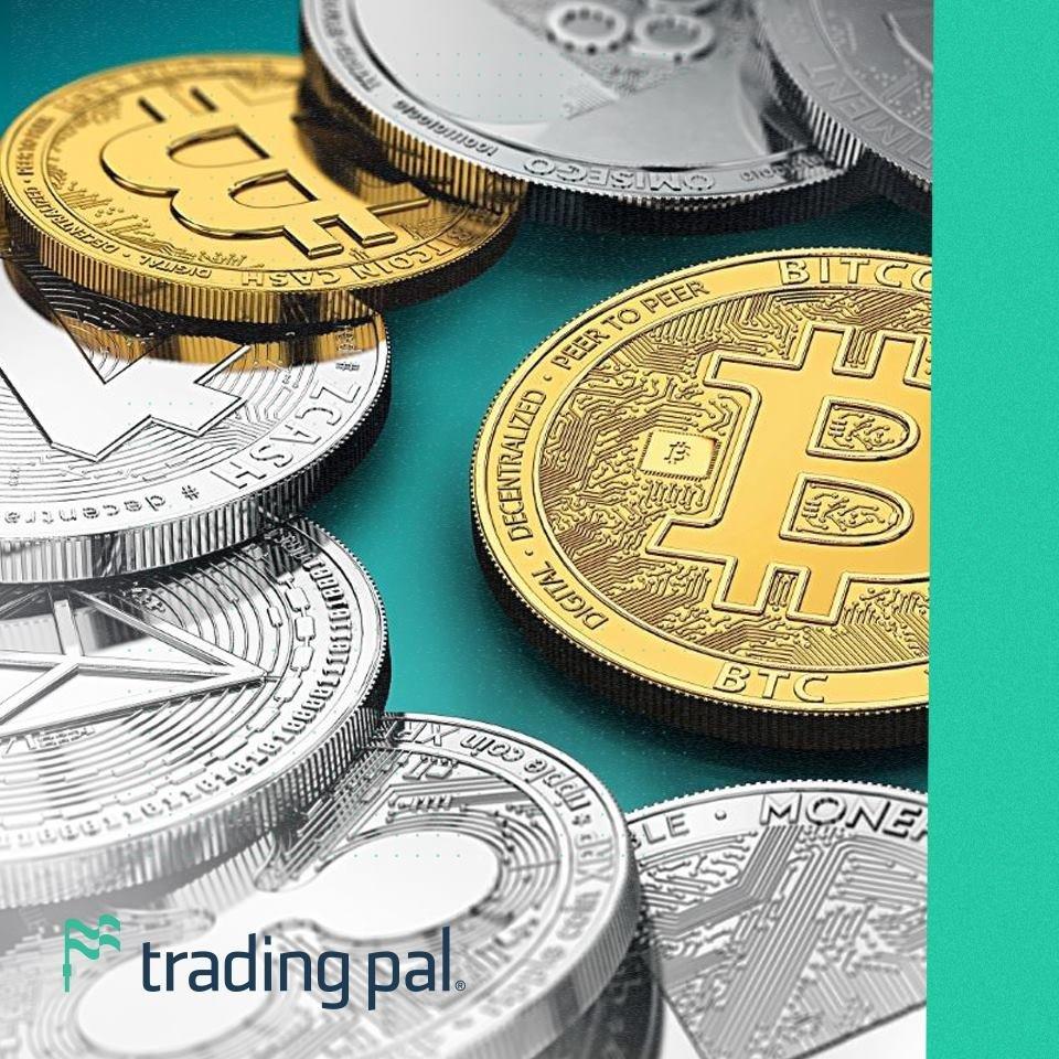 forex moneda maghiară bitcoin câștigă video