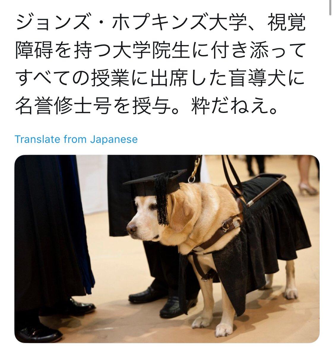 32,000RT】盲導犬に名誉修士号を...