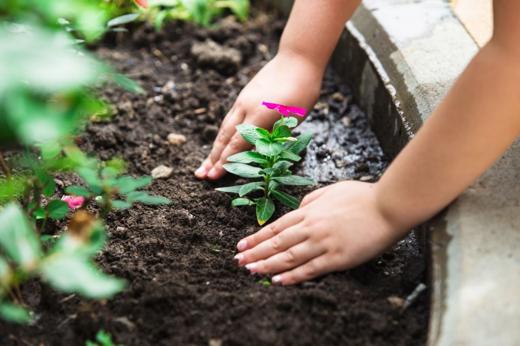 Картинка как дети сажают цветы