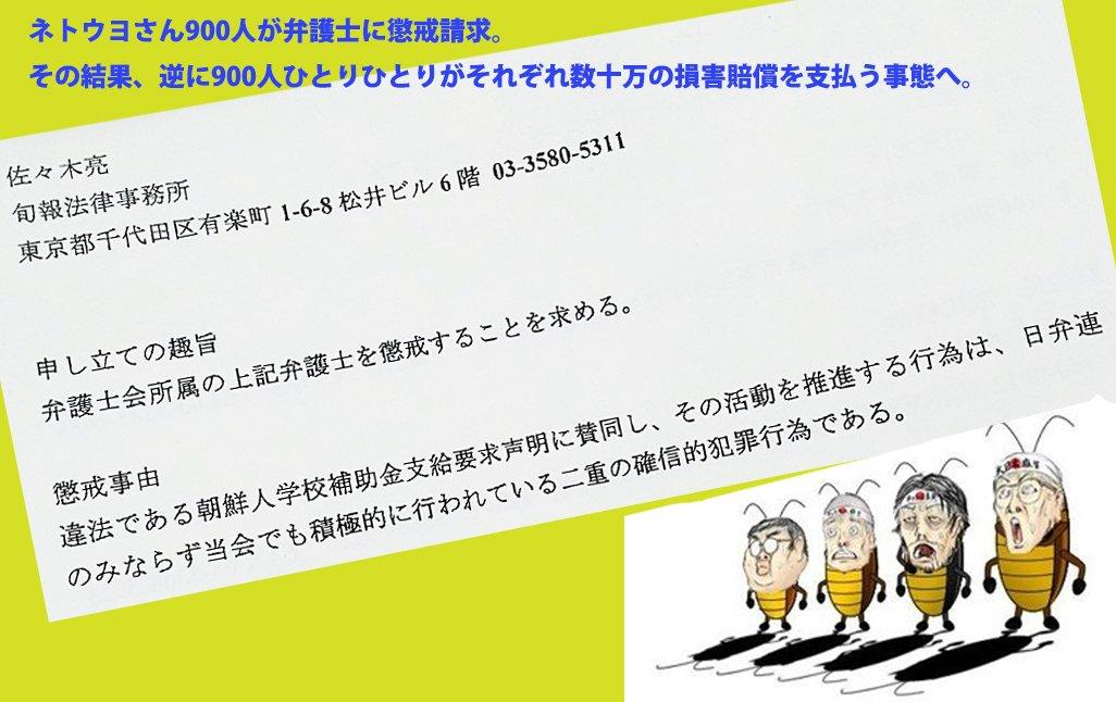 ネトウヨ、祝・メディアデビュー