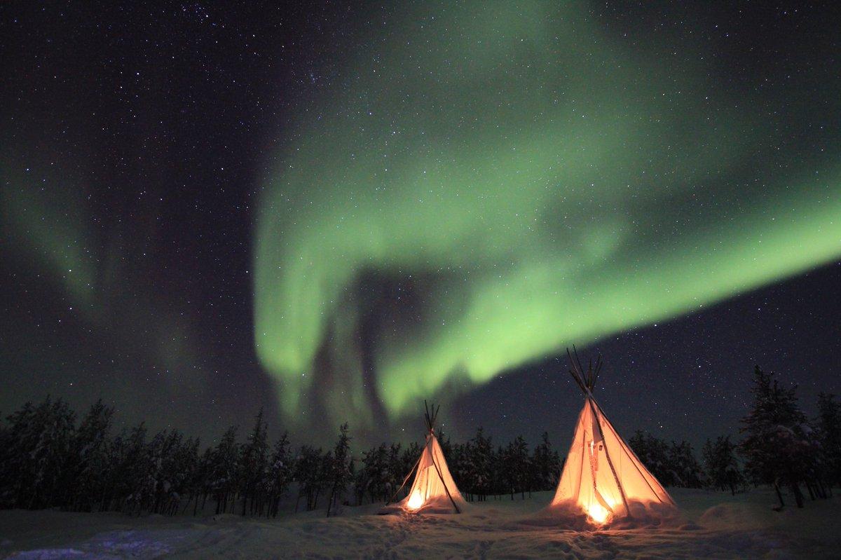 Under the Northern Lights 🌌