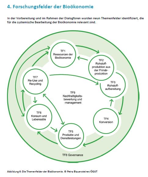 Prozessethik: Zur Organisation ethischer