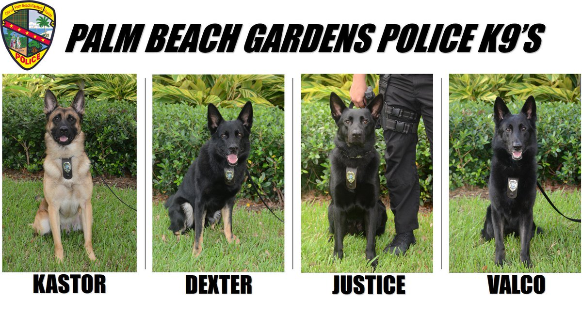Palm Bch Gdns Police on Twitter: \
