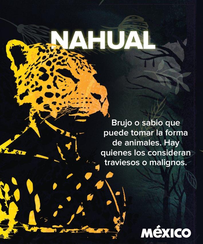 México On Twitter Algunas Personas Creían Que El Nahual Era El