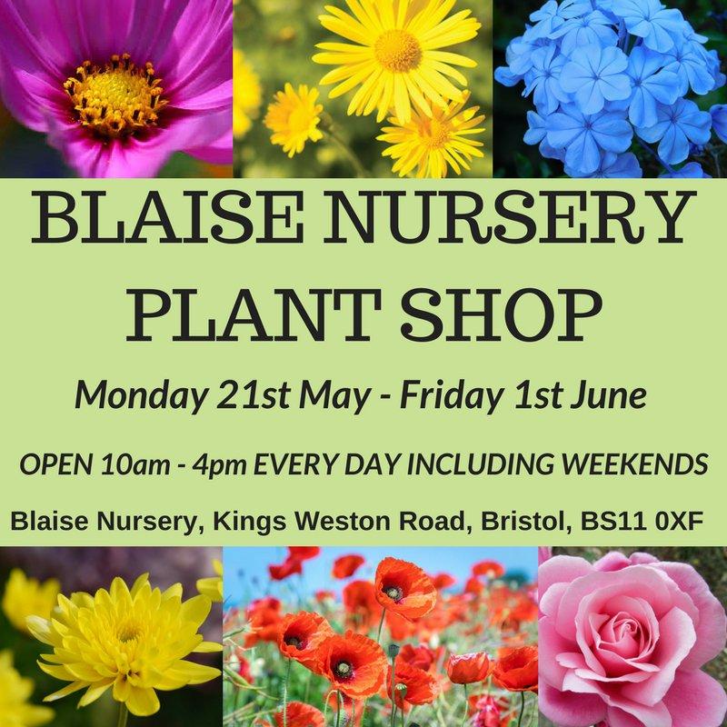 Bristol Parks On Twitter The Next Blaise Nursery Plant