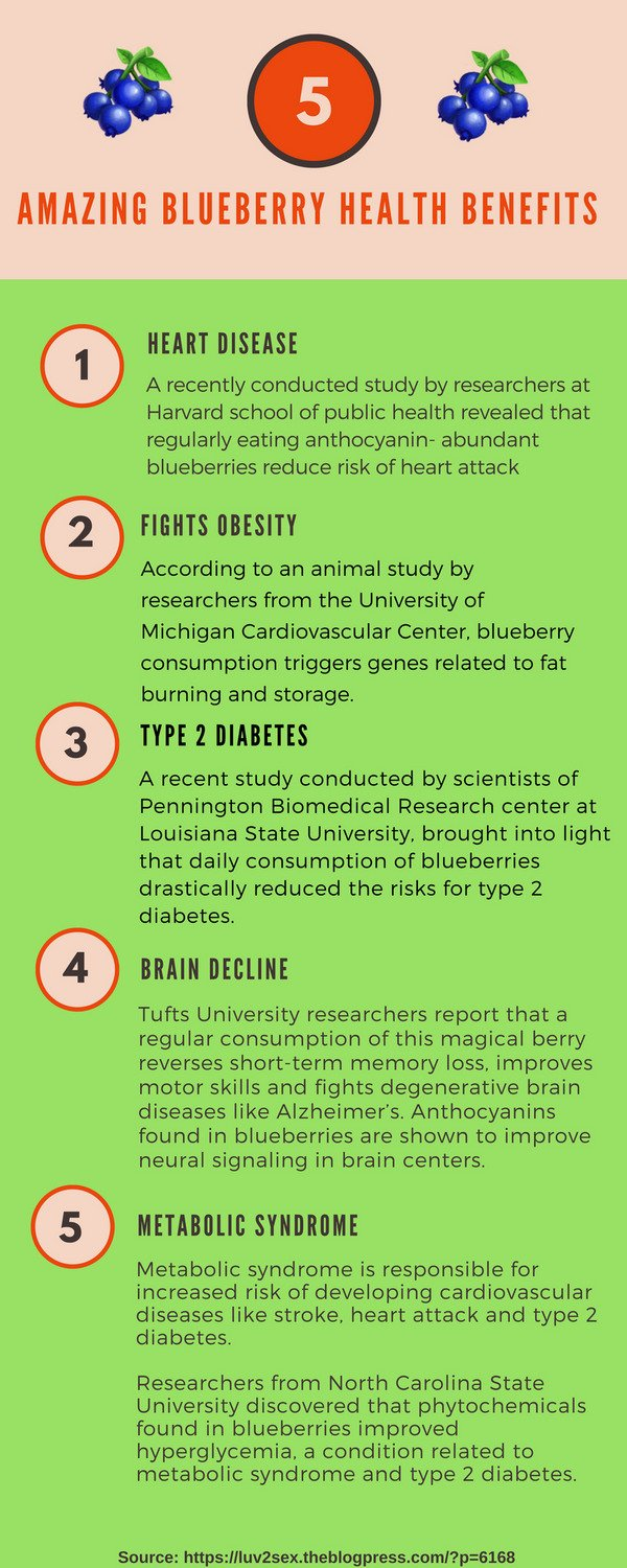 Revealing Here the 5 Amazing Blueberry Health Benefits