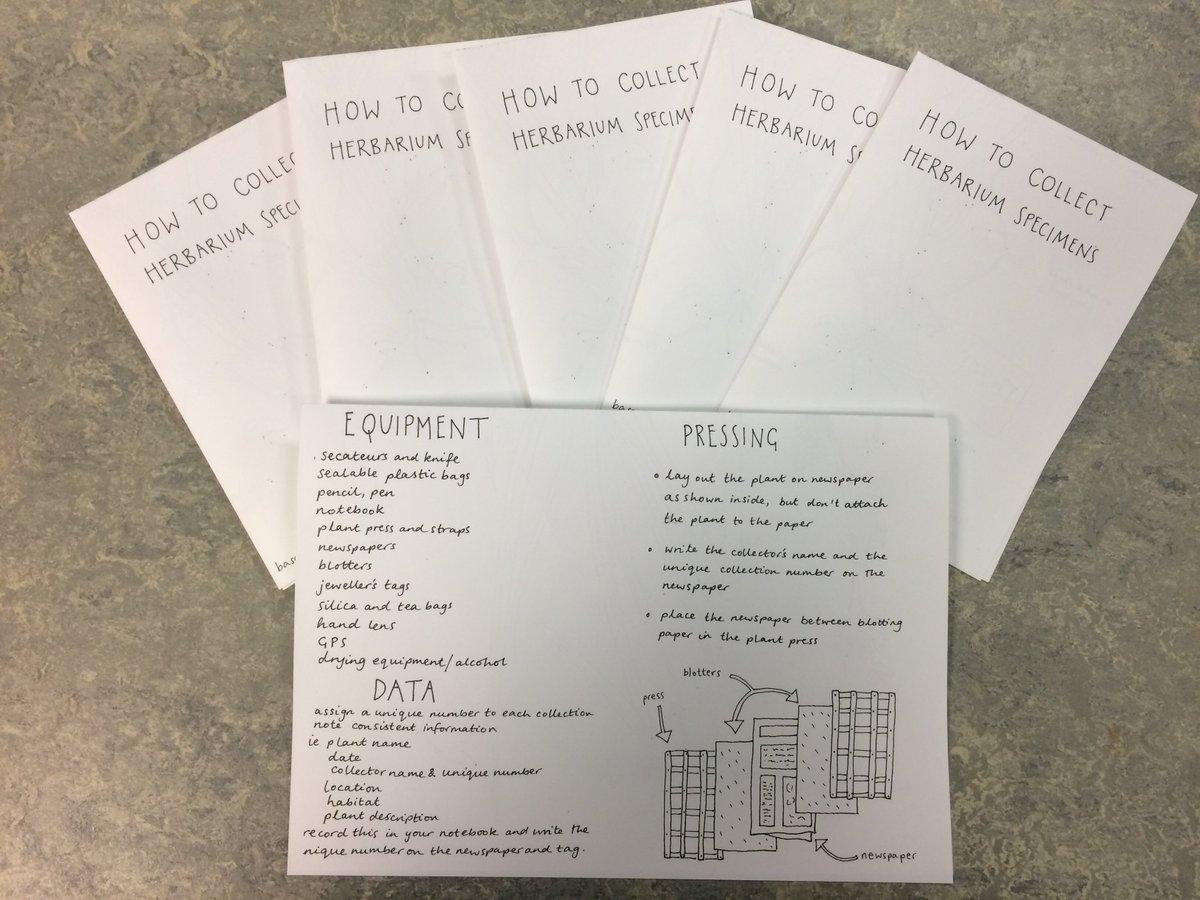 epub Что такое математика? Элементарный очерк