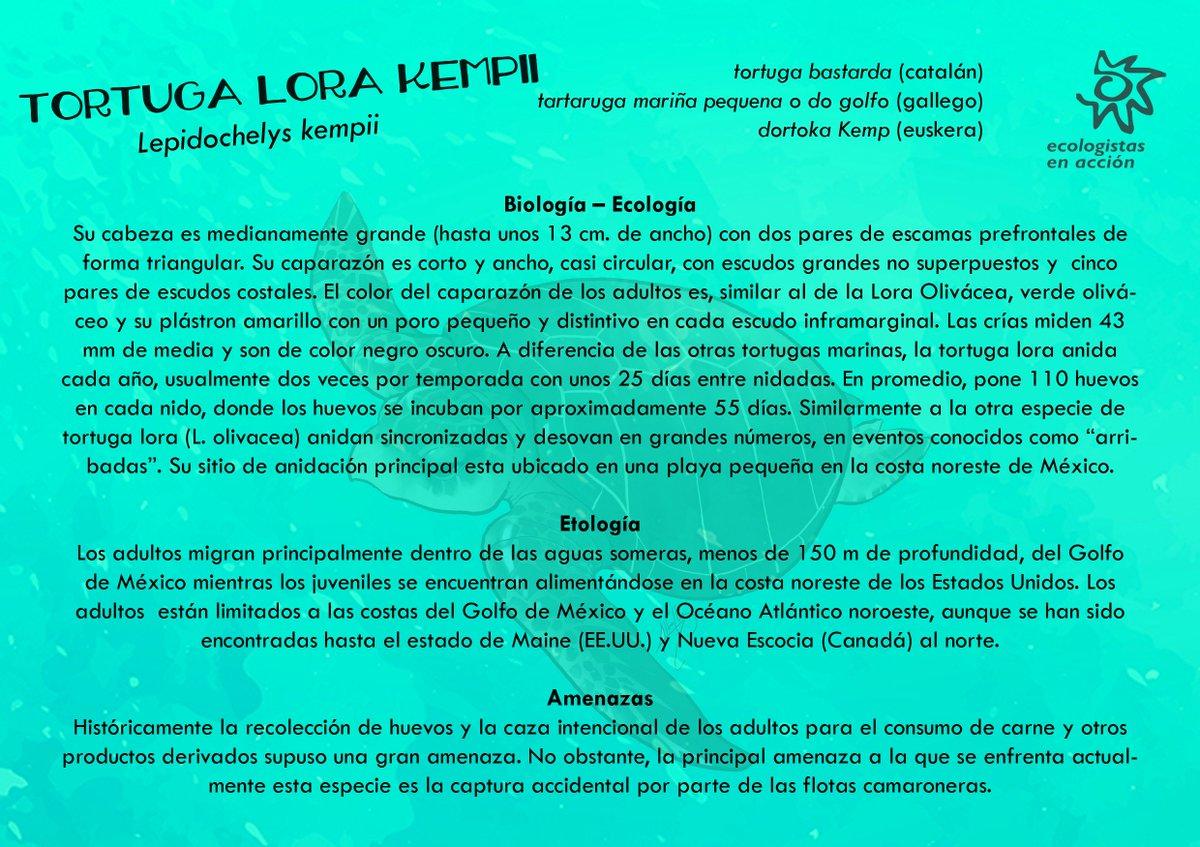 Perfecto Reanuda Las Words De Acción Colección - Ejemplo De ...