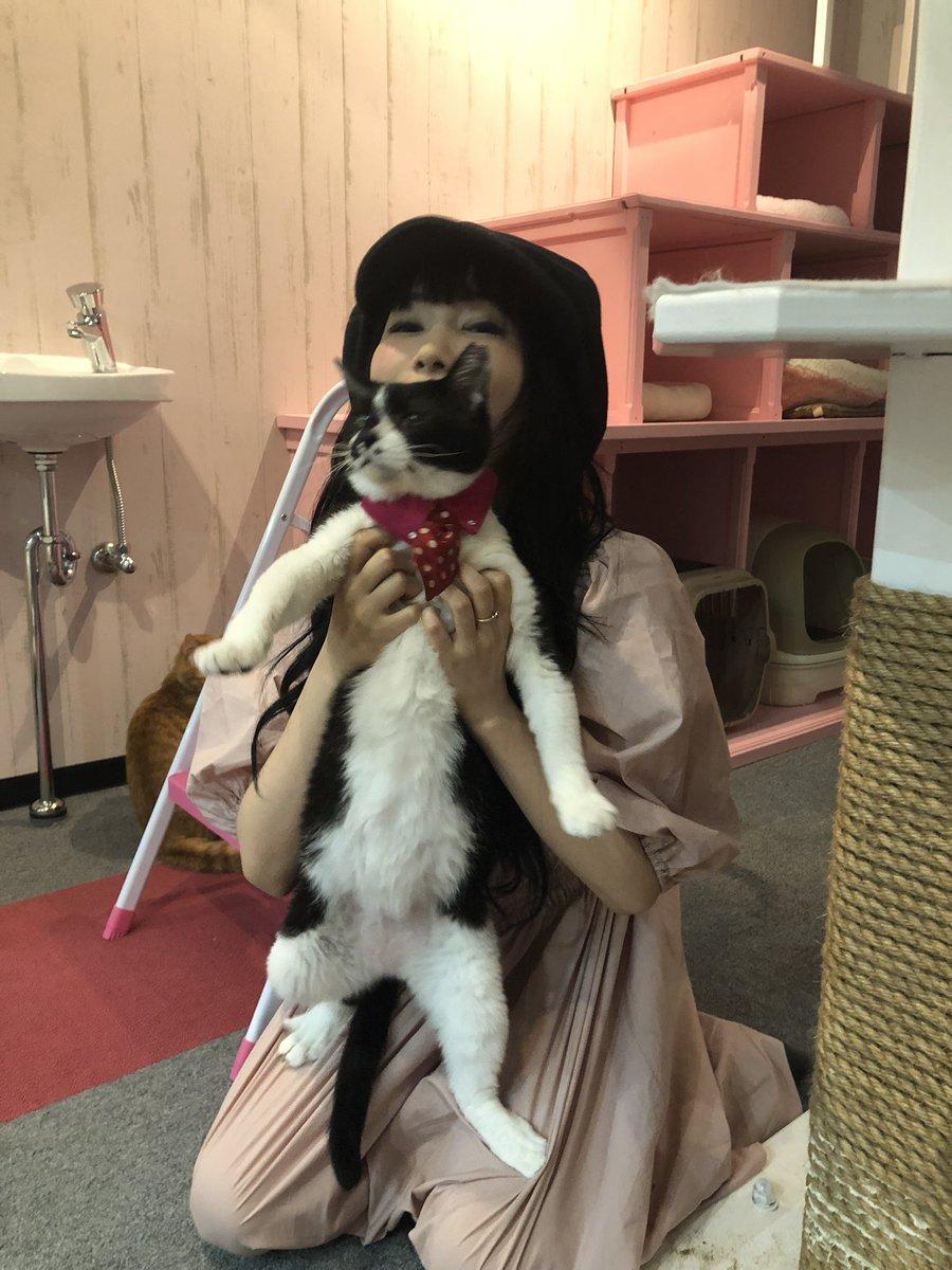 猫を抱っこしている中川翔子