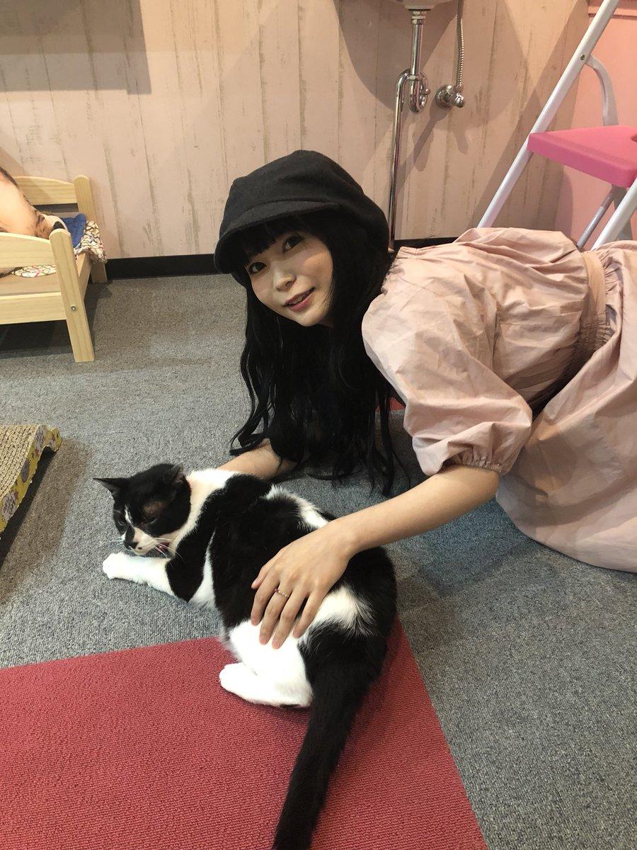 猫をなでている中川翔子