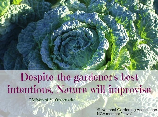National Gardening on Twitter: \