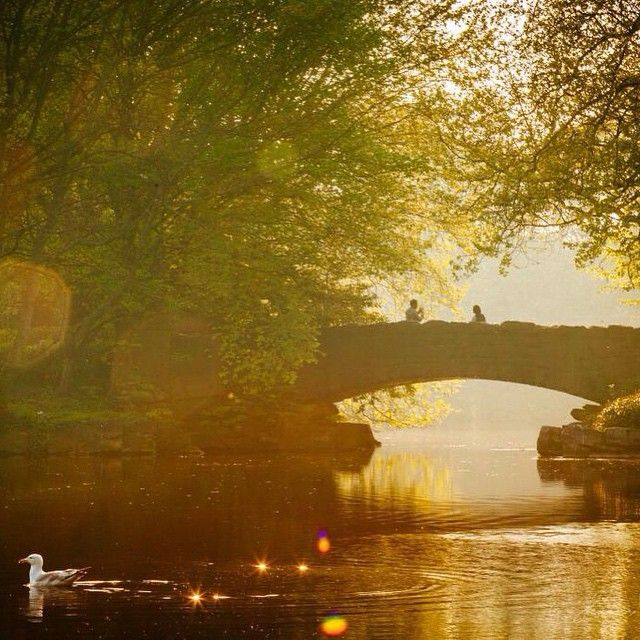 New post (Sunset in Dublin at St Stephens Green) has been published on Happy Mothers Day 2018 - happymothersdaywishes.info/sunset-in-dubl…