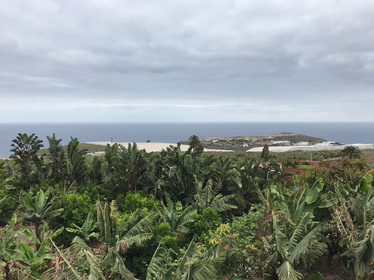 ERC + CERA: 42º Rallye Islas Canarias [3-5 Mayo] - Página 5 Dca6TdfWsAABZAh