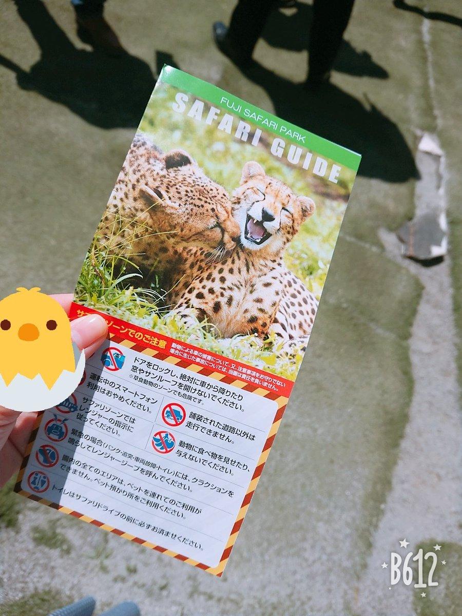 富士 サファリパーク 事故