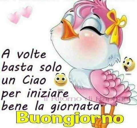 Chiara Civolani Sur Twitter Noooo Su Su Stai Allegro