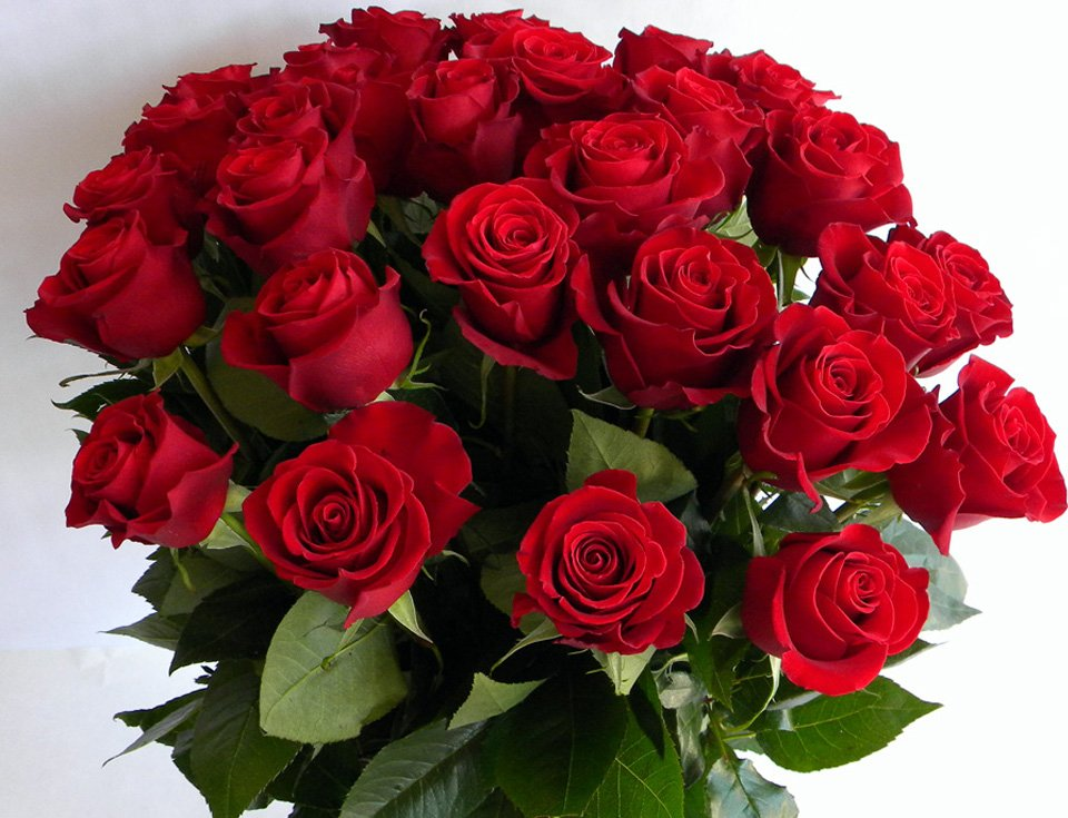 Розы открытки поздравления, другу внимание