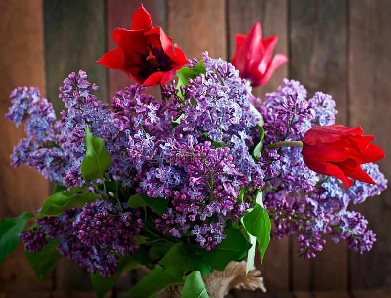 сирень и тюльпаны букет картинки спектр услуг- изготовление