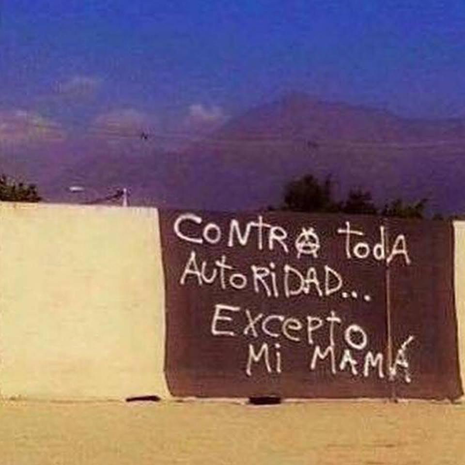 мама-анархия