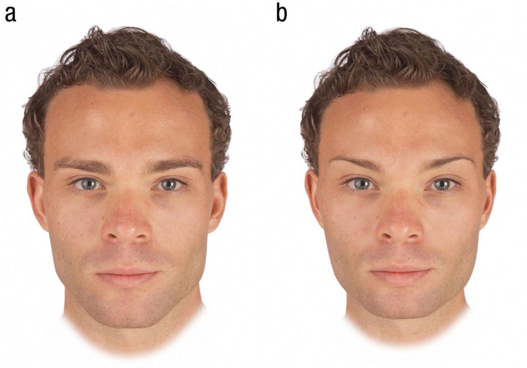 правильные черты лица у мужчин фото вы, это