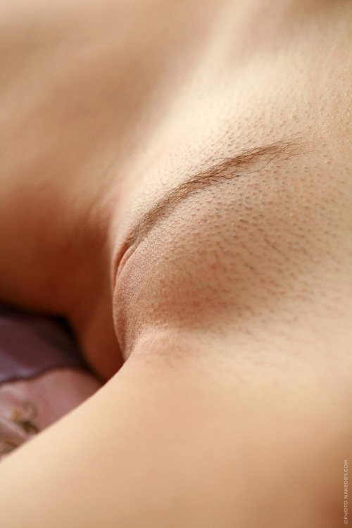closeup-pictures-shaved-pubes-galleries-nude-boobs-mature