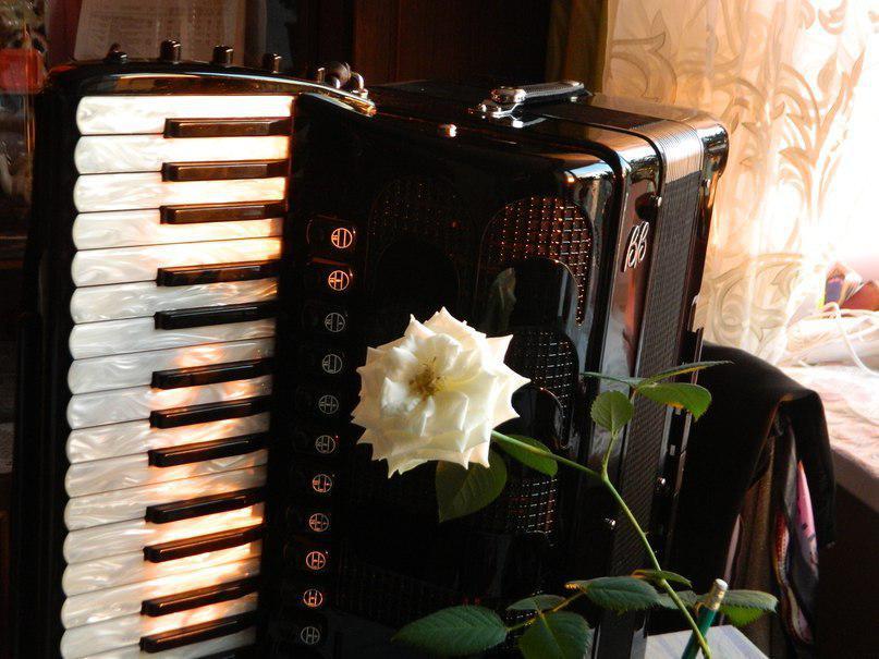 Открытки с аккордеоном ко дню рождения, открытки для любимой