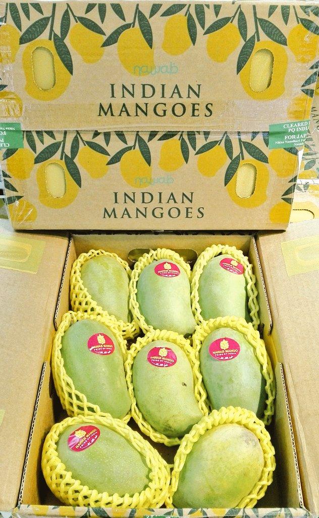 インドマンゴー通販
