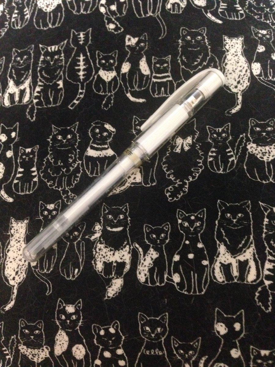 ふぃーゆ On Twitter ホワイトペンを買いました これで塗り絵にハイ