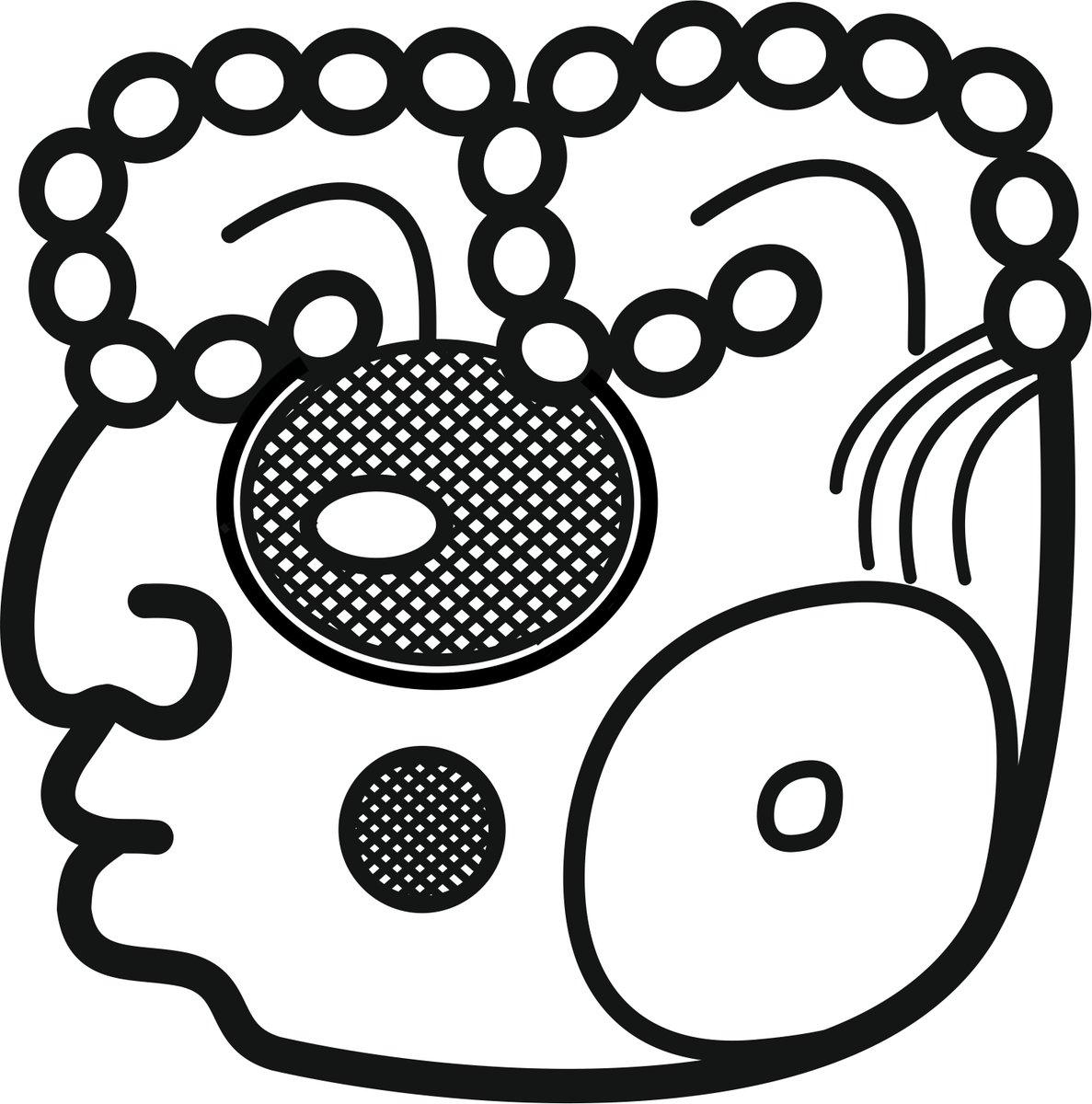 Christian Prager On Twitter Fun With Mayahieroglyphs An