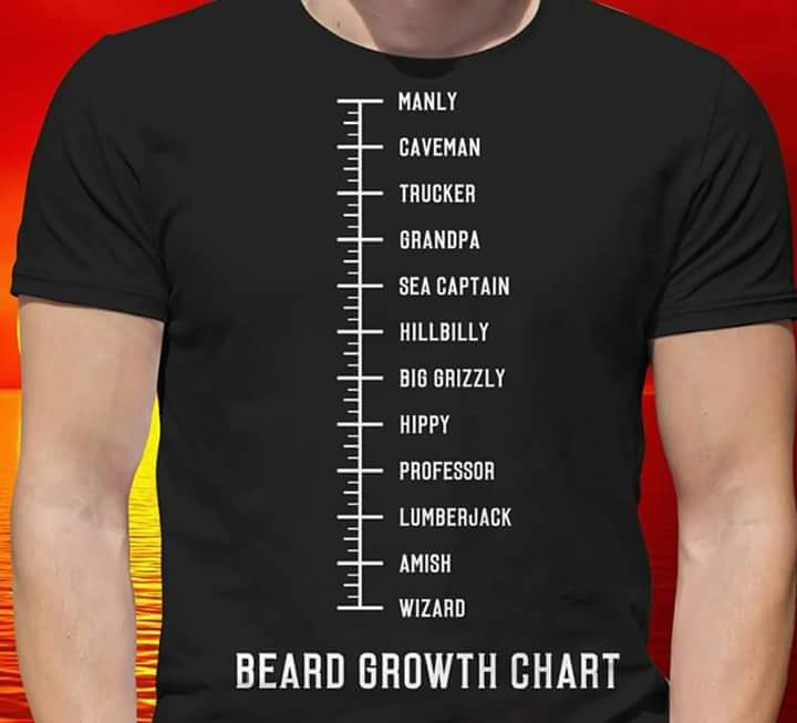 Bear Grooming On Twitter Where Are You On The Beard Growth Chart