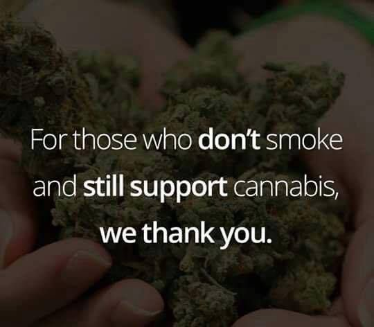 From The Bottom Of My Heart An From The Entire Cannabis Community.. Thank  You! #Support #advocacy #community #22toZero #BloomTHC #CannabisCommunity  ...