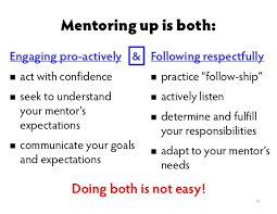 The Goldilocks Principle Meeting Needs >> Megan Ranney Md Mph On Twitter As A Mentor It Helps When
