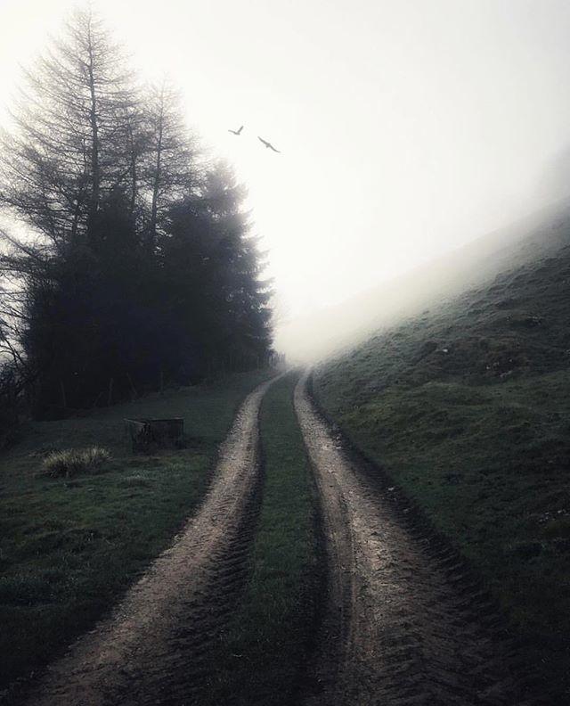 Instagram: Enhanced using our Fog effects for @lensdistortions by @matt_kirby33 #LensDistortions instagram.com/p/BijJsfnl3T7/