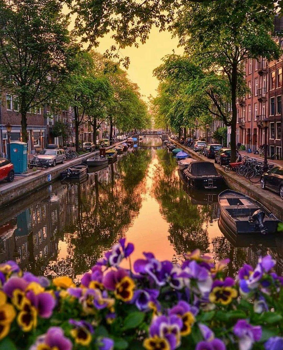 ناشيونال جيوغرافيك En Twitter أمستردام عاصمة هولندا ومركزها