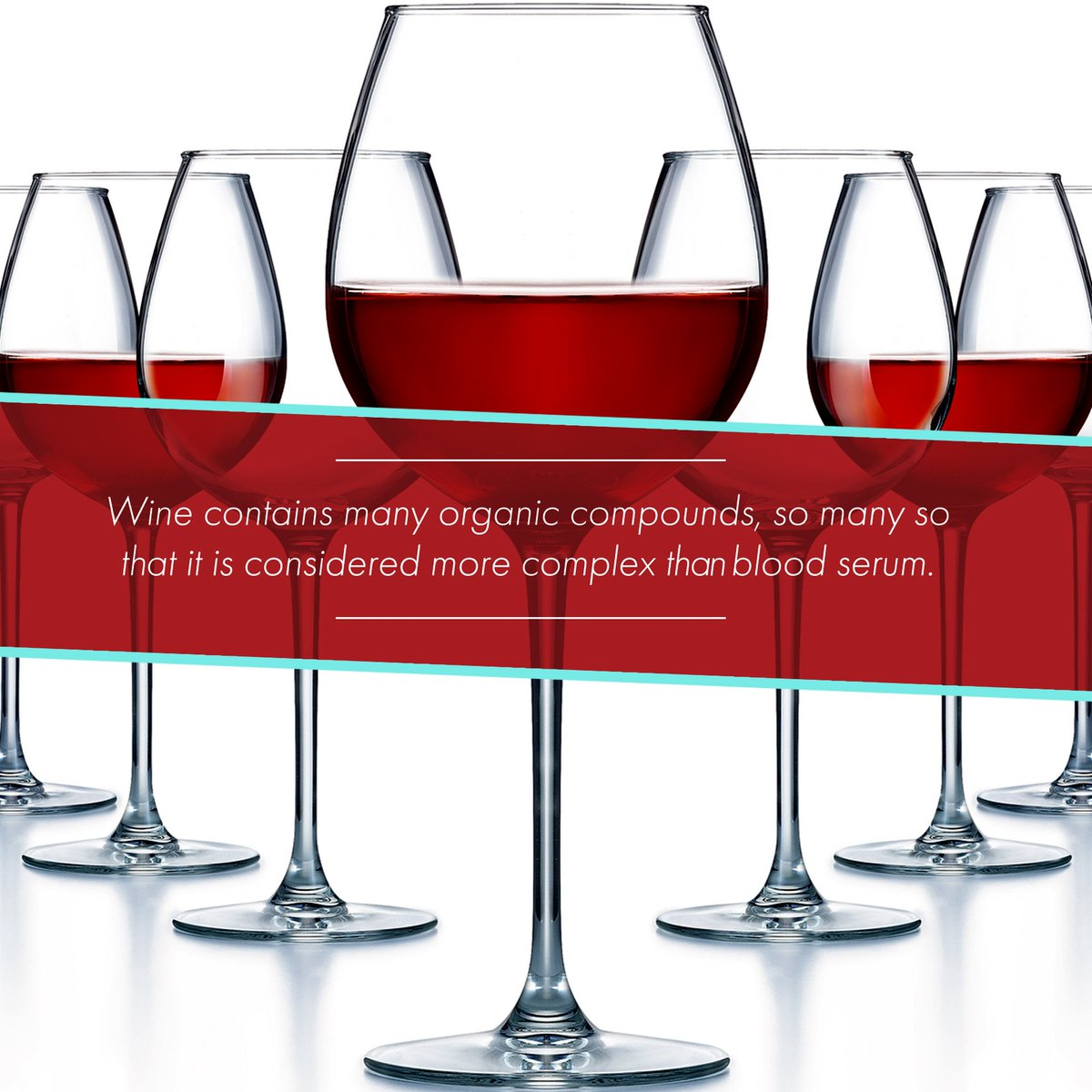 Arc Tableware UK on Twitter \ #WednesdayWisdom - Wine has a truly complex structure - #Winesday #WednesdayWineWisdom #Wine #Facts #Oenology #Sommelier ...  sc 1 st  Twitter & Arc Tableware UK on Twitter: \
